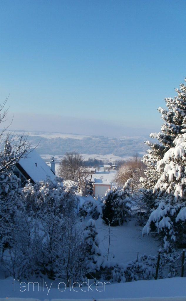 Weihnachten-Schweiz-2010-147
